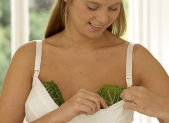 Cabbage Leaves for Breast engorgement