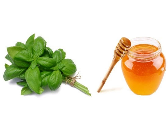 Basil leaves with honey