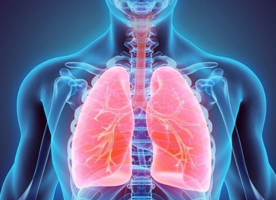 Keeps lungs clean