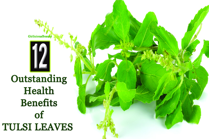 12 Outstanding Health Benefits of Tulsi Leaves – Every Must Know