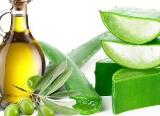 Aloevera and olive oil