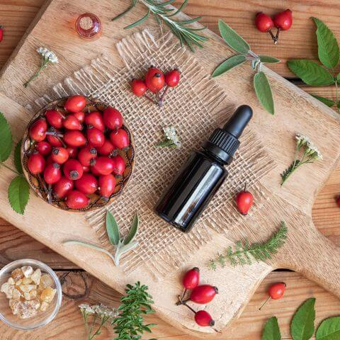 Benefits of Rosehip Oil For Your Skin