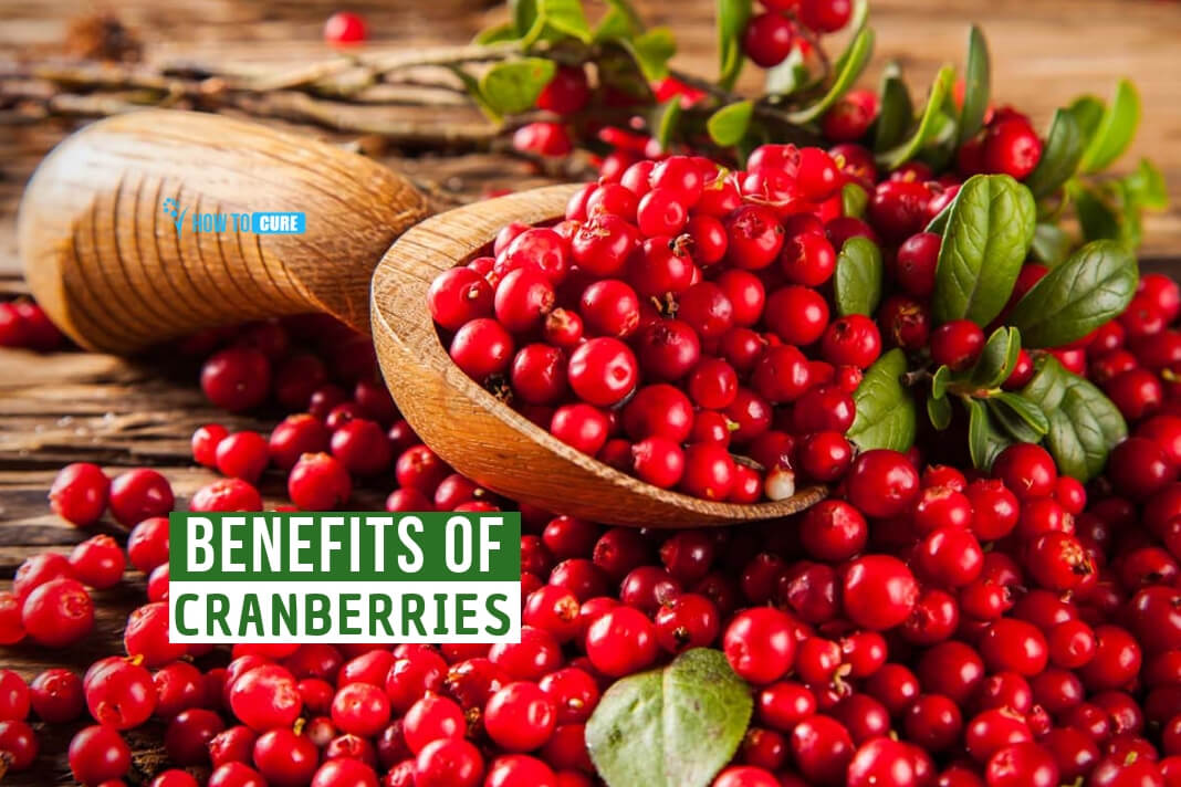 More Than Just a Thanksgiving Staple: 7 Surprising Benefits of Cranberries ?>
